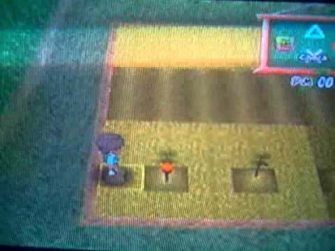 Harvest moon A Wonderfull life ~ RARE CROPS