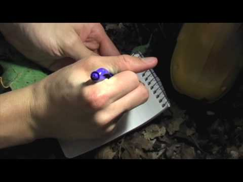 Geocaching: Old Swedes Cache