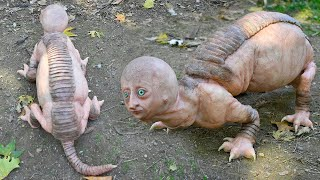 12 Strange Animals That Are Born Once In A Thousand Years
