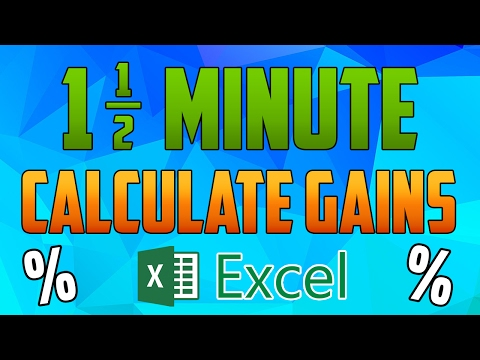 Excel 2016 - How to Calculate your Return / Percentage of Gains or Losses of an Investment