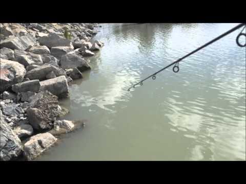 Crappie Fishing Utah Lake