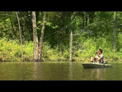 Flyrod & Kayak Bluegill Fishing