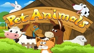 Pet animal activity and song for children full Educational video for babies and toddlers