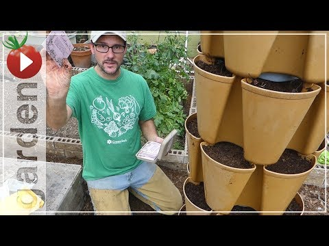 Gardening In Small Spaces - Greenstalk Vertical Vegetable Gardening! Strawberries, Carrots, Lettuce