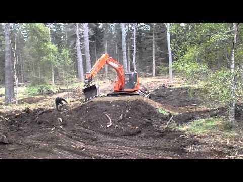 Day #21 - Orange Construction
