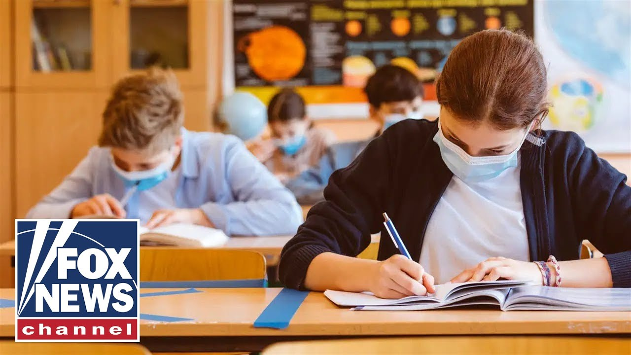 Woke culture is 'infecting schools,' says author of 'Woke Inc.'