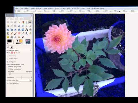 GIMP - Foreground Select Tool by Calla Cela