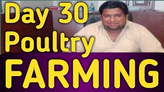 Problems of Poultry in pakistan, Comment by Mr  Abdul Basit Chairman
