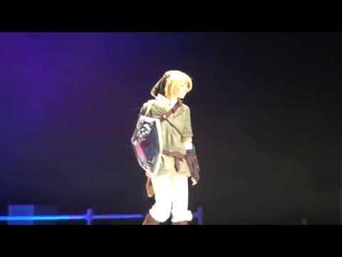 Link Cosplay The Legend of Zelda Twilight Princess Japan Expo 2016 Humour HD