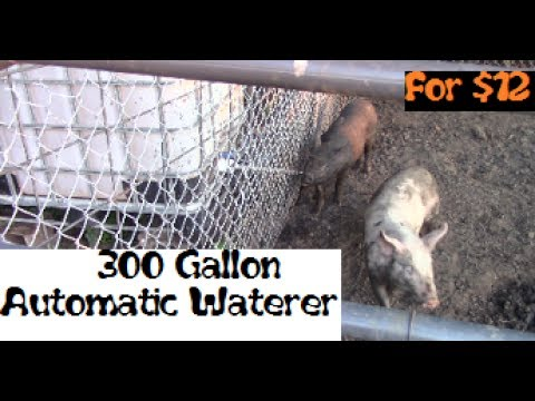 how to make a automatic pig waterer
