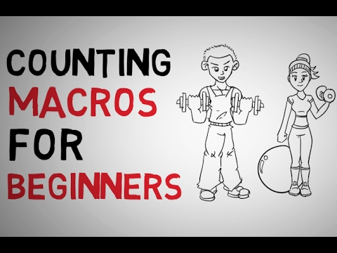 How to Count Macros| Macro Counting For Beginners