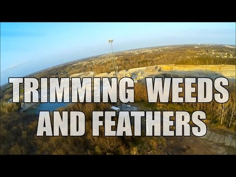Trimming Weeds And Feathers