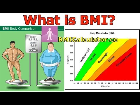 BMI (Body Mass Index) Introduction, History and BMI Calculator