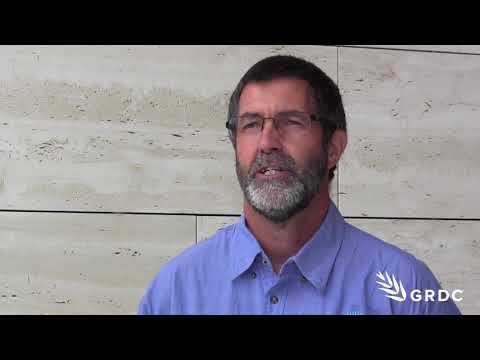 Phil Ward, CSIRO, investigating when subsoil amelioration pays the bills | GRDC Updates | Western