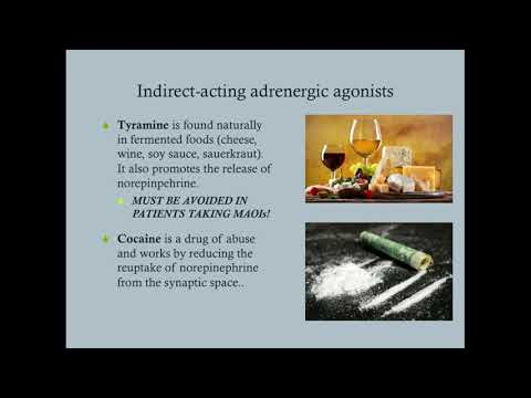 Adrenergic Agonists (Part Two) - CRASH! Medical Review Series