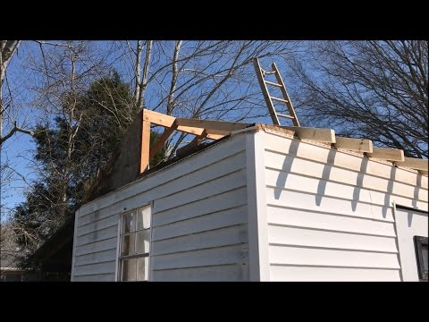 How to Repair a Shed Roof (Day 3)