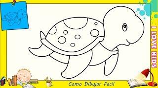 Dibujos De Cocodrilos Faciles Paso A Paso Para Ninos Como Dibujar