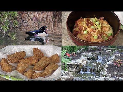 Shrimp and Grits, Fried Fish Secret, Identifying Birds & Bluegill Fishing (#607)
