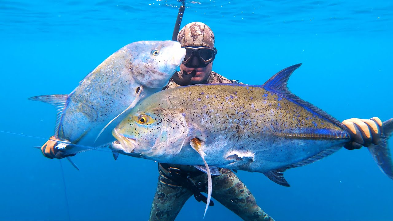 INDO TALES - EPISODE 1 Double blufin trevally and cooking octopus