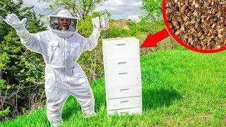 I BOUGHT 25,000 HONEY BEES for My NEW FARM!!! (Bad Idea)