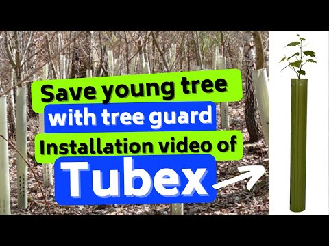 Save young tree with tree guard,Installation video of tubex