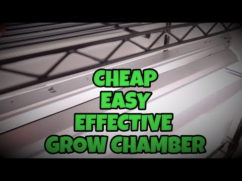 HOW TO MAKE A SEED GROWING CHAMBER