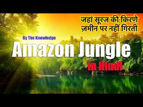 Wild Amazon (Amazon Jungle and River Hindi)