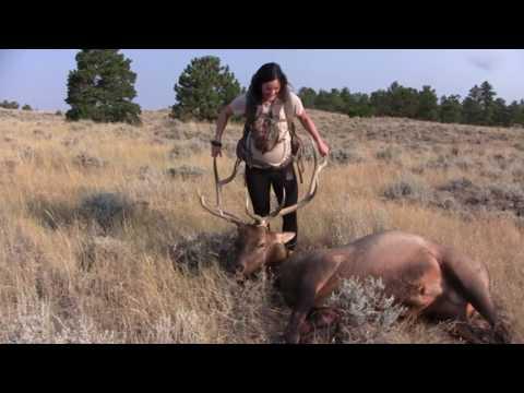 DIY Public Land 2017 Wyoming Archery Elk Hunt
