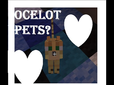 How to have a pet ocelot in minecraft (not a cat)