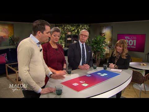 """Richard Jomshof (SD): """"Integration är inte en höger-vänster-fråga"""" - Malou Efter tio (TV4)"""