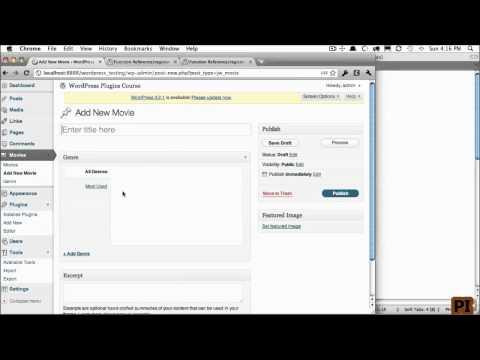 wordpress Custom Post Types 5 Custom Taxonomies