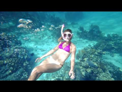 Summer Only in Cayman - Snorkeling Connections