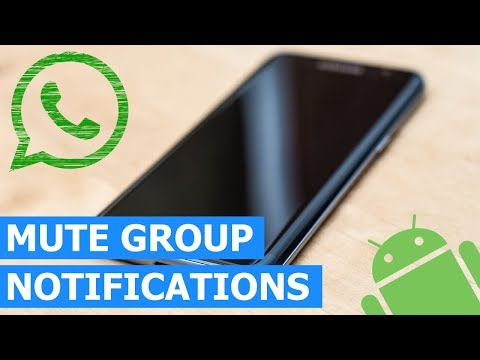 How to Mute (Disable) WhatsApp Group Notifications on a Samsung Galaxy (Method 1)