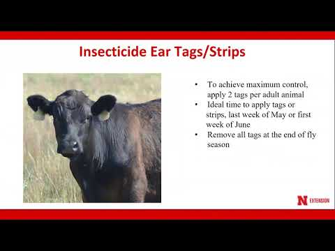 Controlling Horn Flies on Pastured Cattle Spring 2018