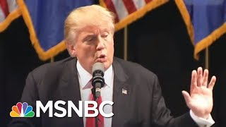 Another Person In Room During Donald Trump Jr. Meeting | Morning Joe | MSNBC