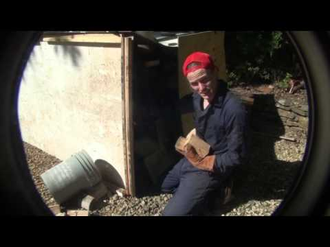 Killing Bugs in Reclaimed Wood