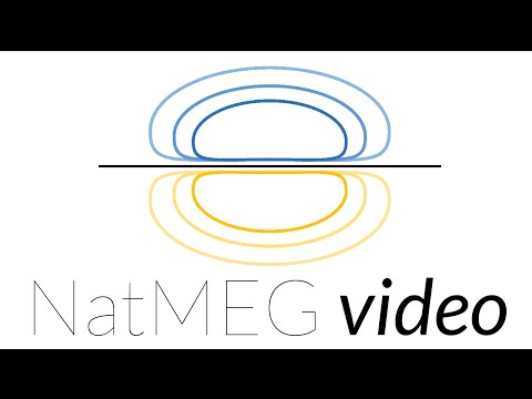 NatMEG lecture: Forward modelling in MEG and EEG by Robert Oostenveld