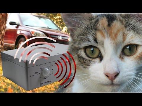 Car anti-sleeping cat lounge device (Arduino project)