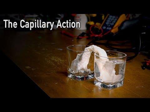 The Capillary Action