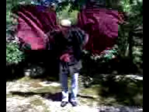 moving Demon wings - www.OmniWings.com