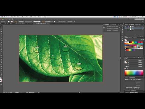 Simple Water Drop Effect in Adobe Illustrator CC