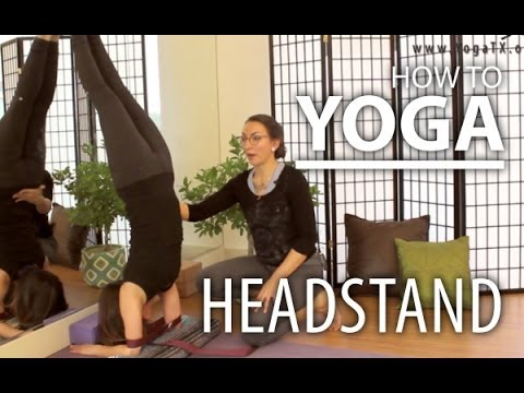 Yoga For Beginners - Learn To Forearm Stand, & Gain Forearm Strength & Balance
