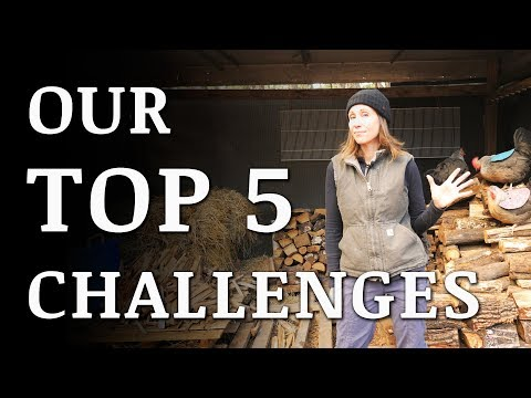 Our 5 Biggest CHALLENGES Living OFF GRID