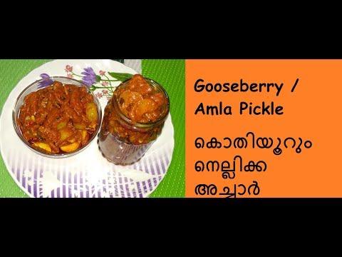 കൊതിയൂറും നെല്ലിക്ക അച്ചാർ / Gooseberry / Amla Pickle / No - 234