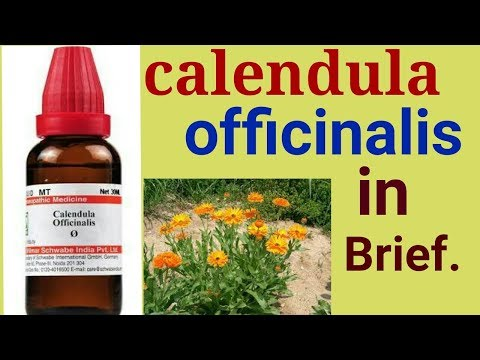 Homeopathy remedy Calendula  for boils, wounds, acne, rashes, skin infection, ulcer, cyst, in hindi.