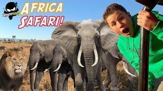 Ninja Kidz go on Safari in Africa! Wild Animals! Lions and Leopards!