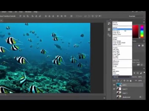 How to make effect Invert in Photoshop cc