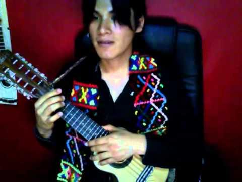 PUKA RED - Concertista de Charango (Destreza y Versatilidad)