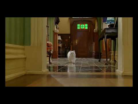 stuart little 2 full movie in hindi free download mp4