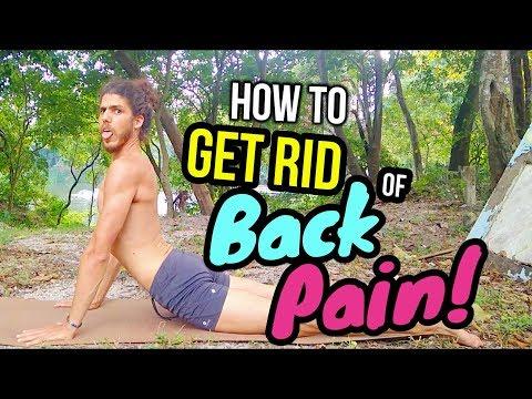 Easy Yoga For Back Pain 😵 Yoga For Neck & Back Pain